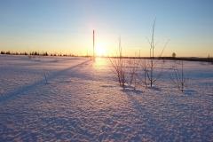 Kvälls sol